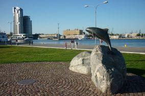 """Pomnik Morświna - Gdynia [Pomniki]<br><a href=""""?s=nadmorskie-poi&o=we&id_kat=46&id_m=37&id=3670"""">pokaż szczegóły punktu...</a>"""