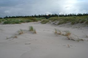 49 - Słajszewo [Wejścia na plażę]