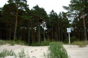 """16 - Karwieńskie Błota [Wejścia na plażę]<br><a href=""""?s=nadmorskie-poi&o=we&id_kat=13&id_m=78&id=218"""">pokaż szczegóły punktu...</a>"""