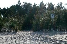 """34 - Kuźnica [Wejścia na plażę]<br><a href=""""?s=nadmorskie-poi&o=we&id_kat=13&id_m=96&id=293"""">pokaż szczegóły punktu...</a>"""