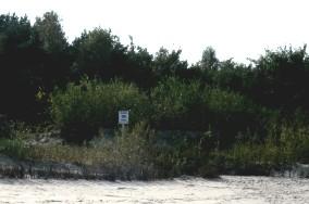"""36 - Kuźnica [Wejścia na plażę]<br><a href=""""?s=nadmorskie-poi&o=we&id_kat=13&id_m=96&id=295"""">pokaż szczegóły punktu...</a>"""