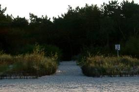 """55 - Jastarnia [Wejścia na plażę]<br><a href=""""?s=nadmorskie-poi&o=we&id_kat=13&id_m=60&id=315"""">pokaż szczegóły punktu...</a>"""