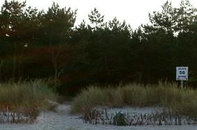 """56 - Jastarnia [Wejścia na plażę]<br><a href=""""?s=nadmorskie-poi&o=we&id_kat=13&id_m=60&id=316"""">pokaż szczegóły punktu...</a>"""