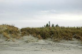 """10 - Piaski [Wejścia na plażę]<br><a href=""""?s=nadmorskie-poi&o=we&id_kat=13&id_m=139&id=344"""">pokaż szczegóły punktu...</a>"""