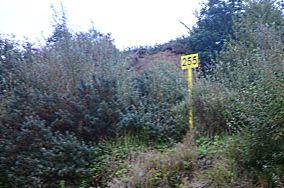"""255 km - Jarosławiec [Kilometraż]<br><a href=""""?s=nadmorskie-poi&o=we&id_kat=18&id_m=59&id=1129"""">pokaż szczegóły punktu...</a>"""