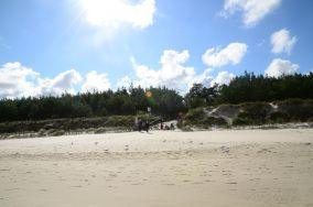 """43 - Karwia [Wejścia na plażę]<br><a href=""""?s=nadmorskie-poi&o=we&id_kat=13&id_m=77&id=238"""">pokaż szczegóły punktu...</a>"""