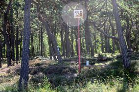 """136 km - Ostrowo [Kilometraż]<br><a href=""""?s=nadmorskie-poi&o=we&id_kat=18&id_m=136&id=2112"""">pokaż szczegóły punktu...</a>"""