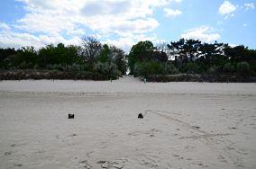 """15 - Niechorze [Wejścia na plażę]<br><a href=""""?s=nadmorskie-poi&o=we&id_kat=13&id_m=123&id=1361"""">pokaż szczegóły punktu...</a>"""