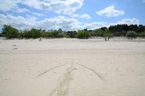 """13 - Niechorze [Wejścia na plażę]<br><a href=""""?s=nadmorskie-poi&o=we&id_kat=13&id_m=123&id=1327"""">pokaż szczegóły punktu...</a>"""