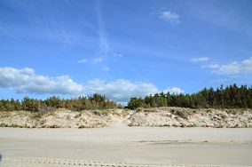 """353.0 km - Mrzeżyno [Wejścia na plażę]<br><a href=""""?s=nadmorskie-poi&o=we&id_kat=13&id_m=120&id=1341"""">pokaż szczegóły punktu...</a>"""