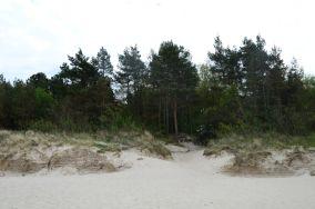 """338/3 - Grzybowo [Wejścia na plażę]<br><a href=""""?s=nadmorskie-poi&o=we&id_kat=13&id_m=260&id=3839"""">pokaż szczegóły punktu...</a>"""