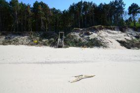 """314.x km - Pleśna [Wejścia na plażę]<br><a href=""""?s=nadmorskie-poi&o=we&id_kat=13&id_m=144&id=3863"""">pokaż szczegóły punktu...</a>"""