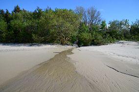 """311.x km - Gąski [Wejścia na plażę]<br><a href=""""?s=nadmorskie-poi&o=we&id_kat=13&id_m=34&id=3866"""">pokaż szczegóły punktu...</a>"""