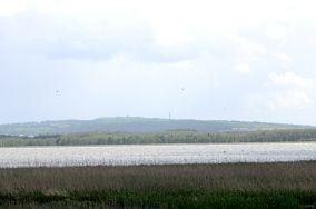 Krzyżanka (Góra Chełmska) - Koszalin [Wieże i punkty widokowe]