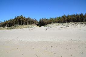 """288.x km - Łazy [Wejścia na plażę]<br><a href=""""?s=nadmorskie-poi&o=we&id_kat=13&id_m=106&id=3883"""">pokaż szczegóły punktu...</a>"""