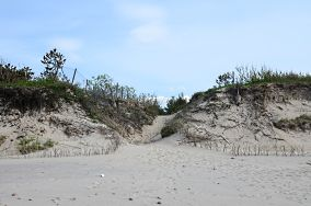 """260.9 km - Wicie [Wejścia na plażę]<br><a href=""""?s=nadmorskie-poi&o=we&id_kat=13&id_m=228&id=1125"""">pokaż szczegóły punktu...</a>"""