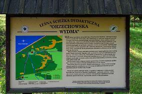 """Orzechowska Wydma - Orzechowo [Wieże i punkty widokowe]<br><a href=""""?s=nadmorskie-poi&o=we&id_kat=57&id_m=133&id=3958"""">pokaż szczegóły punktu...</a>"""