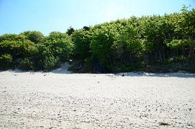 Wejście - Poddąbie [Wejścia na plażę]