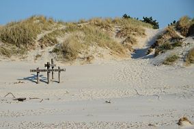 """Czarny szlak do jez. Dołgie Wielkie - Czołpino [Wejścia na plażę]<br><a href=""""?s=nadmorskie-poi&o=we&id_kat=13&id_m=24&id=1038"""">pokaż szczegóły punktu...</a>"""