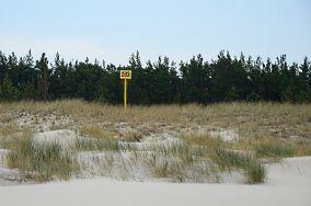 """203 km - Czołpino [Kilometraż]<br><a href=""""?s=nadmorskie-poi&o=we&id_kat=18&id_m=24&id=2195"""">pokaż szczegóły punktu...</a>"""