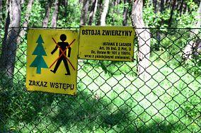"""Granica wschodnia Polski (ląd) - Piaski [Przeszkody]<br><a href=""""?s=nadmorskie-poi&o=we&id_kat=14&id_m=139&id=3144"""">pokaż szczegóły punktu...</a>"""