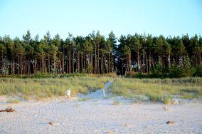 """Rez. Mierzeja Sarbska - Łeba [Wejścia na plażę]<br><a href=""""?s=nadmorskie-poi&o=we&id_kat=13&id_m=107&id=3806"""">pokaż szczegóły punktu...</a>"""