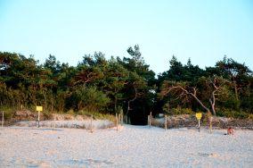 """181.xx - Łeba [Wejścia na plażę]<br><a href=""""?s=nadmorskie-poi&o=we&id_kat=13&id_m=107&id=3814"""">pokaż szczegóły punktu...</a>"""