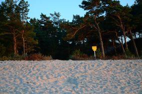 """181.xxx - Łeba [Wejścia na plażę]<br><a href=""""?s=nadmorskie-poi&o=we&id_kat=13&id_m=107&id=3815"""">pokaż szczegóły punktu...</a>"""
