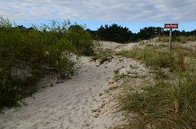 """Ścieżka przyrodnicza Helskie Wydmy - Hel [Wejścia na plażę]<br><a href=""""?s=nadmorskie-poi&o=we&id_kat=13&id_m=52&id=2381"""">pokaż szczegóły punktu...</a>"""