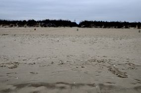 """16 - Gdańsk [Wejścia na plażę]<br><a href=""""?s=nadmorskie-poi&o=we&id_kat=13&id_m=35&id=1106"""">pokaż szczegóły punktu...</a>"""