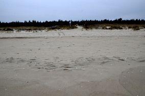 """14 - Gdańsk [Wejścia na plażę]<br><a href=""""?s=nadmorskie-poi&o=we&id_kat=13&id_m=35&id=2239"""">pokaż szczegóły punktu...</a>"""