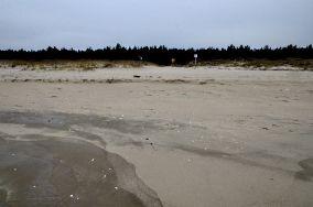 """13 - Gdańsk [Wejścia na plażę]<br><a href=""""?s=nadmorskie-poi&o=we&id_kat=13&id_m=35&id=2238"""">pokaż szczegóły punktu...</a>"""