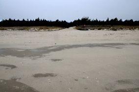 """12 - Gdańsk [Wejścia na plażę]<br><a href=""""?s=nadmorskie-poi&o=we&id_kat=13&id_m=35&id=2237"""">pokaż szczegóły punktu...</a>"""