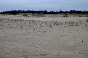 """2 - Gdańsk [Wejścia na plażę]<br><a href=""""?s=nadmorskie-poi&o=we&id_kat=13&id_m=35&id=1104"""">pokaż szczegóły punktu...</a>"""