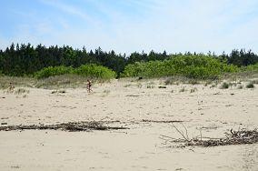 """85 - Jantar [Wejścia na plażę]<br><a href=""""?s=nadmorskie-poi&o=we&id_kat=13&id_m=58&id=2775"""">pokaż szczegóły punktu...</a>"""