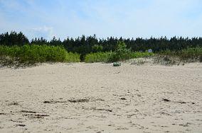 """83 - Jantar [Wejścia na plażę]<br><a href=""""?s=nadmorskie-poi&o=we&id_kat=13&id_m=58&id=2773"""">pokaż szczegóły punktu...</a>"""