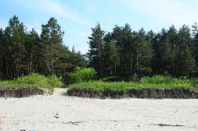 """75 Stegna - Junoszyno [Wejścia na plażę]<br><a href=""""?s=nadmorskie-poi&o=we&id_kat=13&id_m=65&id=2765"""">pokaż szczegóły punktu...</a>"""