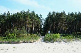 """74 Stegna - Junoszyno [Wejścia na plażę]<br><a href=""""?s=nadmorskie-poi&o=we&id_kat=13&id_m=65&id=2764"""">pokaż szczegóły punktu...</a>"""