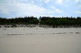 """36 - Krynica Morska [Wejścia na plażę]<br><a href=""""?s=nadmorskie-poi&o=we&id_kat=13&id_m=91&id=2737"""">pokaż szczegóły punktu...</a>"""