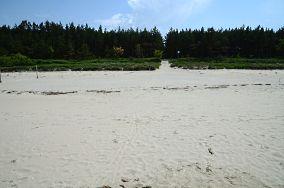"""39 - Krynica Morska [Wejścia na plażę]<br><a href=""""?s=nadmorskie-poi&o=we&id_kat=13&id_m=91&id=2740"""">pokaż szczegóły punktu...</a>"""
