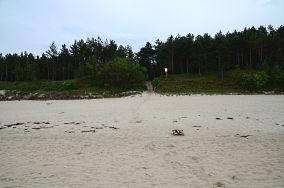 """62 - Sztutowo [Wejścia na plażę]<br><a href=""""?s=nadmorskie-poi&o=we&id_kat=13&id_m=199&id=2757"""">pokaż szczegóły punktu...</a>"""