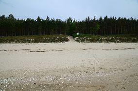 """64 - Stegna [Wejścia na plażę]<br><a href=""""?s=nadmorskie-poi&o=we&id_kat=13&id_m=187&id=2759"""">pokaż szczegóły punktu...</a>"""