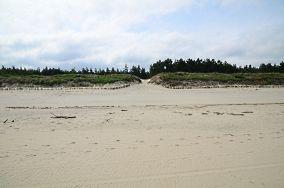 """17 - Krynica Morska [Wejścia na plażę]<br><a href=""""?s=nadmorskie-poi&o=we&id_kat=13&id_m=91&id=337"""">pokaż szczegóły punktu...</a>"""