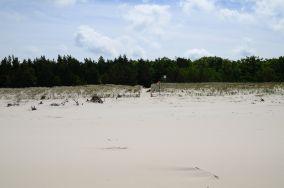 """9 - Karwieńskie Błoto Drugie [Wejścia na plażę]<br><a href=""""?s=nadmorskie-poi&o=we&id_kat=13&id_m=78&id=225"""">pokaż szczegóły punktu...</a>"""