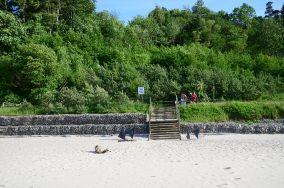 """24 - Jastrzębia Góra [Wejścia na plażę]<br><a href=""""?s=nadmorskie-poi&o=we&id_kat=13&id_m=61&id=513"""">pokaż szczegóły punktu...</a>"""