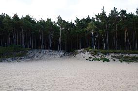 """402.4 km - Wisełka [Wejścia na plażę]<br><a href=""""?s=nadmorskie-poi&o=we&id_kat=13&id_m=233&id=1060"""">pokaż szczegóły punktu...</a>"""